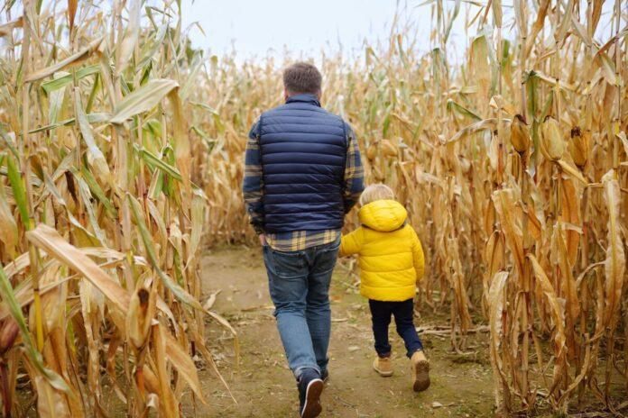 Promo code, coupon for Risser-Marvel Corn Maze in Annville, Pennsylvania