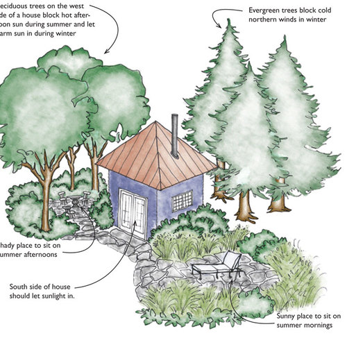Green Landscapes: Native Plants and Soil - GreenBuildingAdvisor on winter potted plants, winter shade plants, winter blooming plants, winter porch plants, winter container plants, winter hibiscus, winter yard plants, winter deck plants, winter perennial plants, winter interest plants, winter flowering plants, winter fragrant plants, winter house landscaping, winter planter plants, winter house art, winter hardy plants, winter outdoor plants, winter house cookies, great winter plants, winter patio plants,