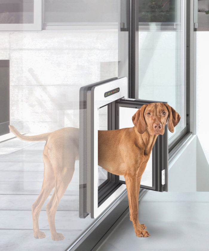 This Pet Door Is Insulated And Wonu0027t Leak Air. Made By An Austrian Company,  The PetWalk Door Comes In Two Sizes, And While Far From Cheap It Lets House  Pets ...