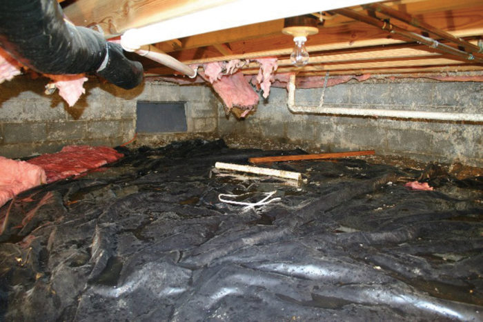 What Causes Crawl Space Mold?