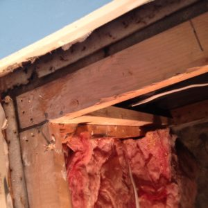How to Insulate a Basement Wall - GreenBuildingAdvisor