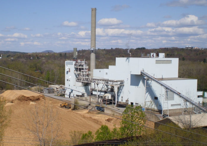 Biomass Electricity Production: How Green Is It