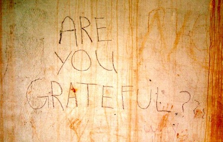 Are you grateful? [Photo by Energy Vanguard]
