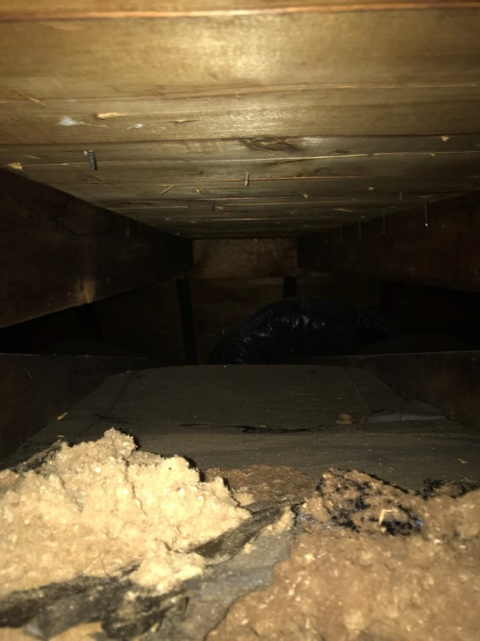 Photo showing very small amount of insulation in attic ceiling
