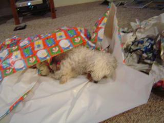 Opening that last gift made me soooooooooo tired!