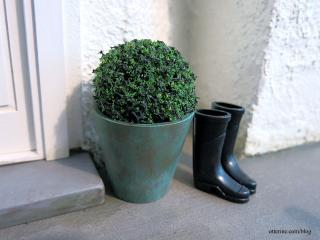 Boxwood in a copper patina planter