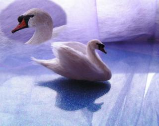 1/12 scale Swan