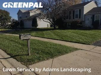 Yard Cutting nearby Elgin, IL, 60123