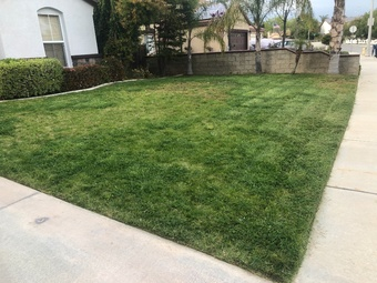 Lawn Mowing in Riverside, 92508, Yard Mowing by Greenscape, work completed in Apr, 2019