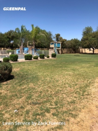 Yard Mowingin Avondale,85392,Lawn Mow by Buckeye Landscaping , work completed in May , 2020