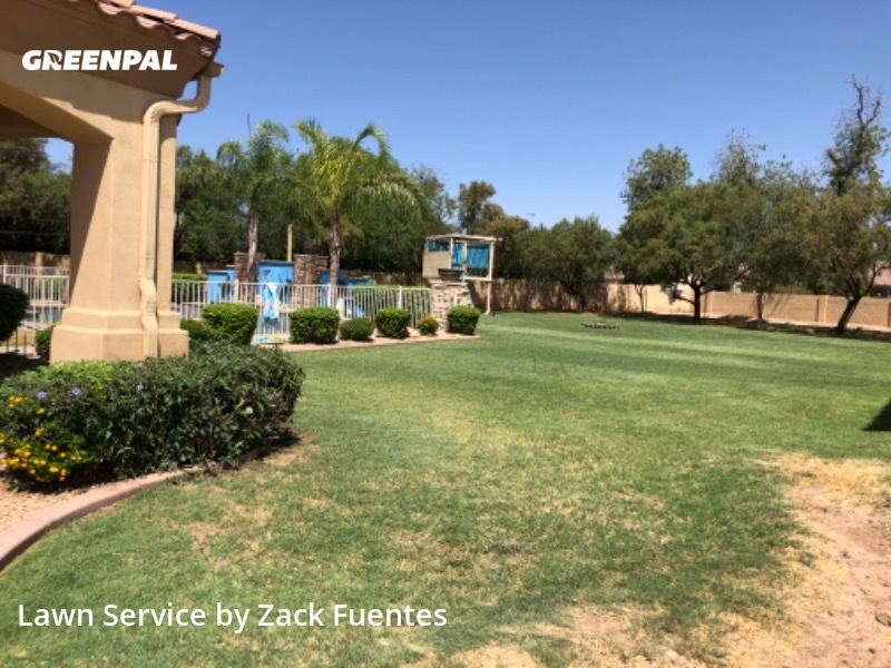 Grass Cuttingin Avondale,85392,Lawn Mowing by Buckeye Landscaping , work completed in Aug , 2020