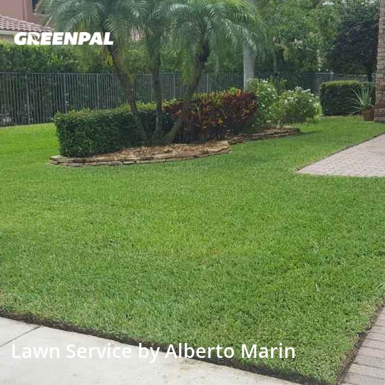 Lawn Care Servicein Parkland,33076,Lawn Mowing by Deluxe Services By A, work completed in Aug , 2020