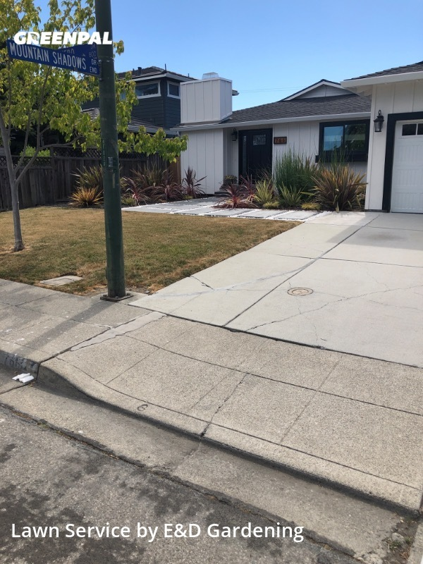 Lawn Servicein Mountain View,94043,Grass Cut by E&D Gardening, work completed in Jul , 2020