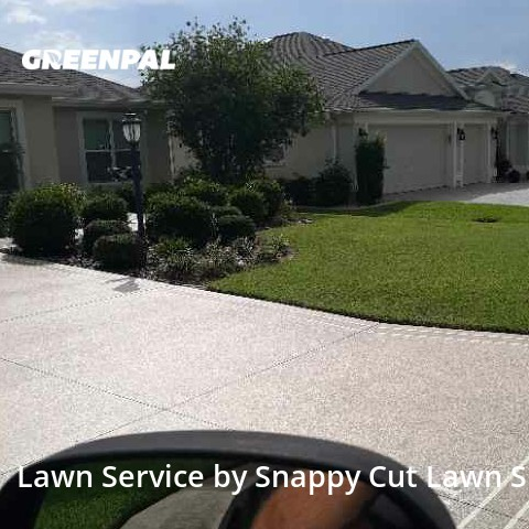 Lawn Maintenancein The Villages,32163,Yard Cutting by Snappy Cut Lawn Serv, work completed in Sep , 2020