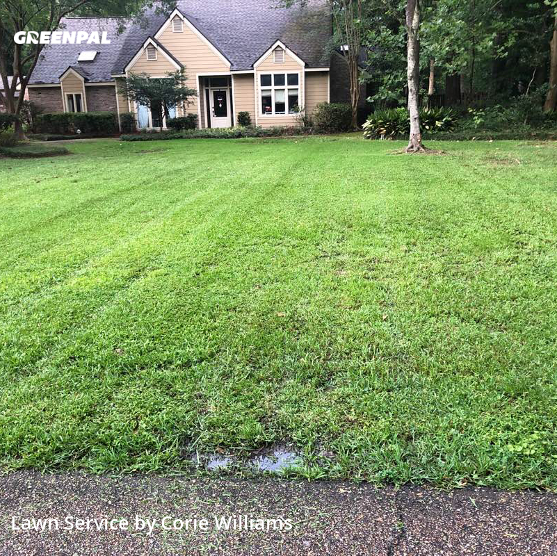 Lawn Mowing Servicein Baton Rouge,70817,Lawn Care by Islandersplantscape, work completed in Aug , 2020