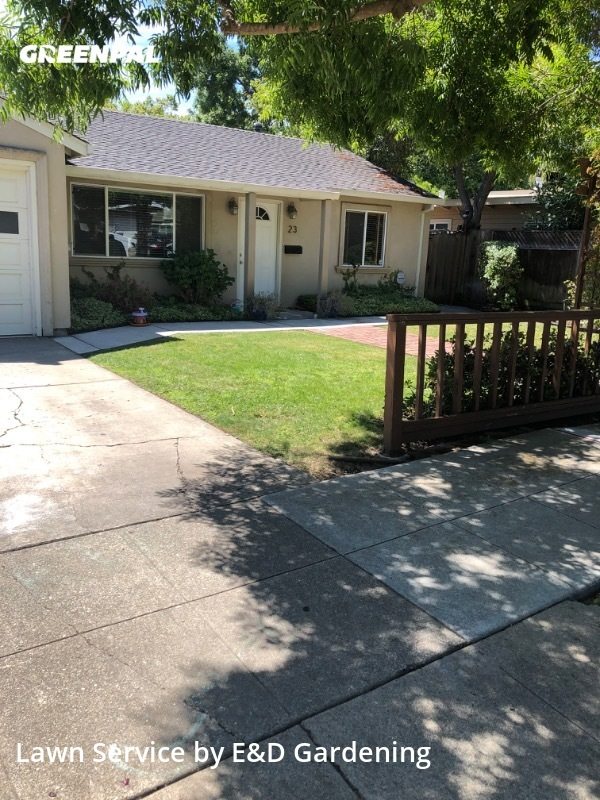 Lawn Cuttingin Redwood City,94063,Yard Mowing by E&D Gardening, work completed in Aug , 2020