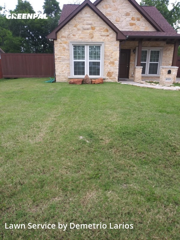 Lawn Servicein Jacinto City,77029,Lawn Maintenance by Larios Lawn Services, work completed in Jul , 2020