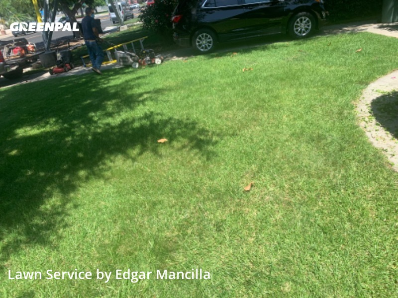 Grass Cuttingin Burbank,91505,Lawn Cut by Edigrass , work completed in Aug , 2020