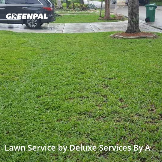 Grass Cuttingin Coral Springs,33065,Lawn Mow by Deluxe Services By A, work completed in Aug , 2020