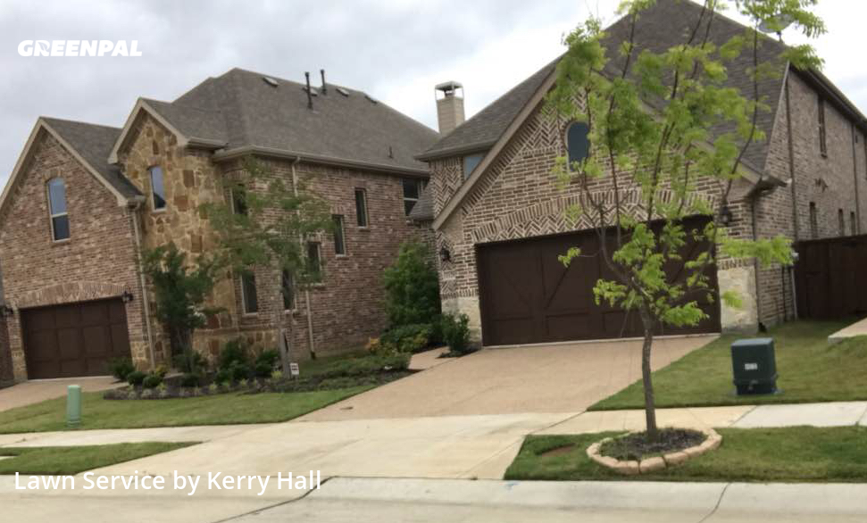 Lawn Carein Carrollton,75010,Yard Cutting by Platinum Iv Lawn Co., work completed in Jul , 2020