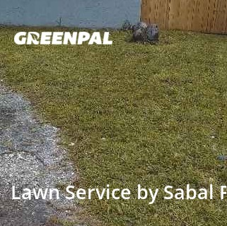Grass Cuttingin North Lauderdale,33068,Lawn Mowing Service by Sabal Palm Lawn Srv., work completed in Aug , 2020
