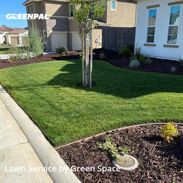 Lawn Cuttingin Rocklin,95677,Lawn Maintenance by Green Space Landscape, work completed in Aug , 2020
