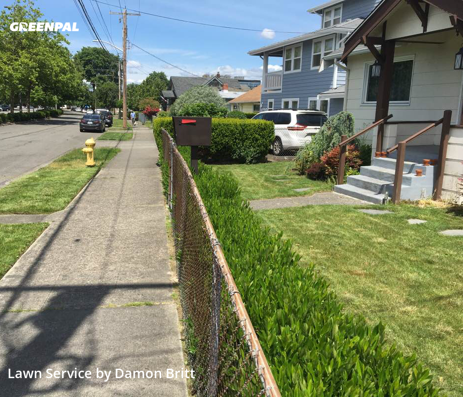 Lawn Cuttingin Renton,98057,Lawn Care Service by A Kut Above , work completed in Jul , 2020