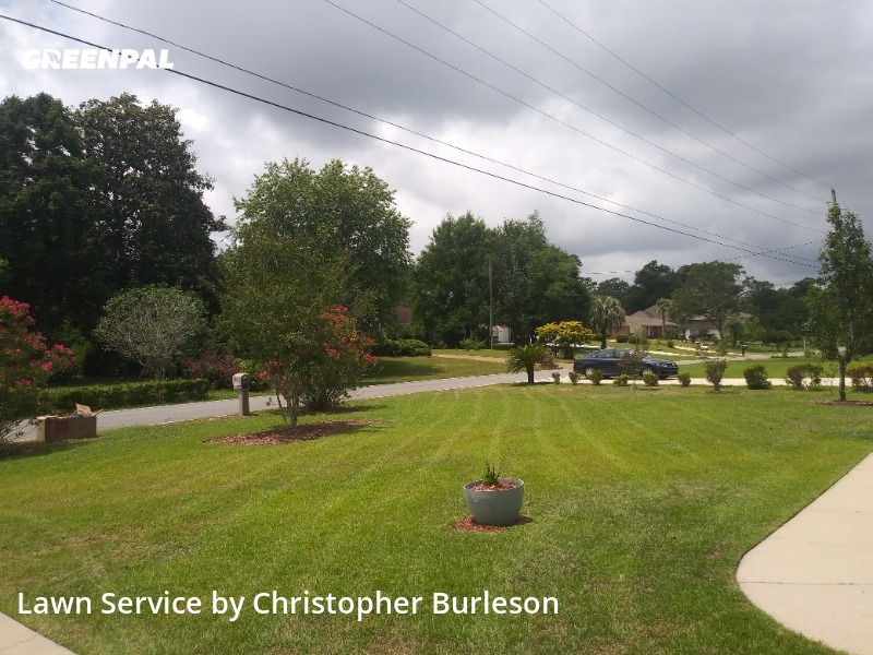 Yard Mowingin Pensacola,32514,Grass Cut by Above The Lawn, work completed in Aug , 2020
