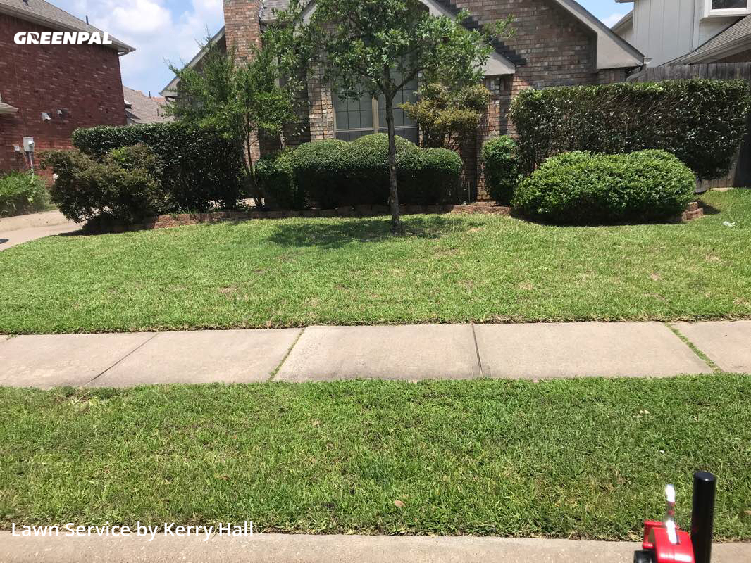 Lawn Maintenancein Carrollton,75007,Lawn Care Service by Platinum Iv Lawn Co., work completed in Aug , 2020