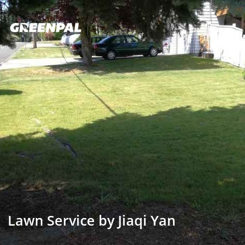 Grass Cutin Kent,98032,Lawn Mow by Small Guy Lawn Mowing, work completed in Aug , 2020