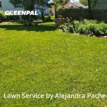Lawn Mowing Servicein Elgin,60120,Yard Cutting by P&A Ps Services Corp, work completed in Jul , 2020