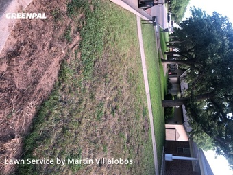 Yard Cuttingin Hurst,76054,Lawn Maintenance by Precision Tree & Lawn, work completed in Jul , 2020