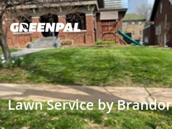 Lawn Mowingin Clayton,63105,Lawn Mowing by Brandon's Lawn Care, work completed in Sep , 2020