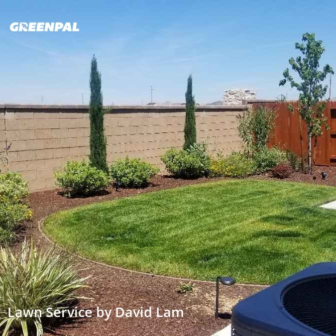 Lawn Carein Roseville,95747,Lawn Cutting by David's Lawn Service, work completed in Aug , 2020