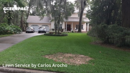 Lawn Carein Altamonte Springs,32701,Lawn Mow by Arocho Landscaping , work completed in May , 2020