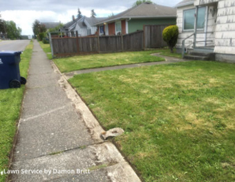 Lawn Cuttingin Tacoma,98404,Lawn Mow by A Kut Above , work completed in May , 2020
