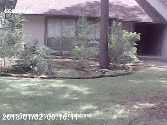 Yard Mowingin The Woodlands,77380,Lawn Maintenance by Clean Lawn Services, work completed in Aug , 2020