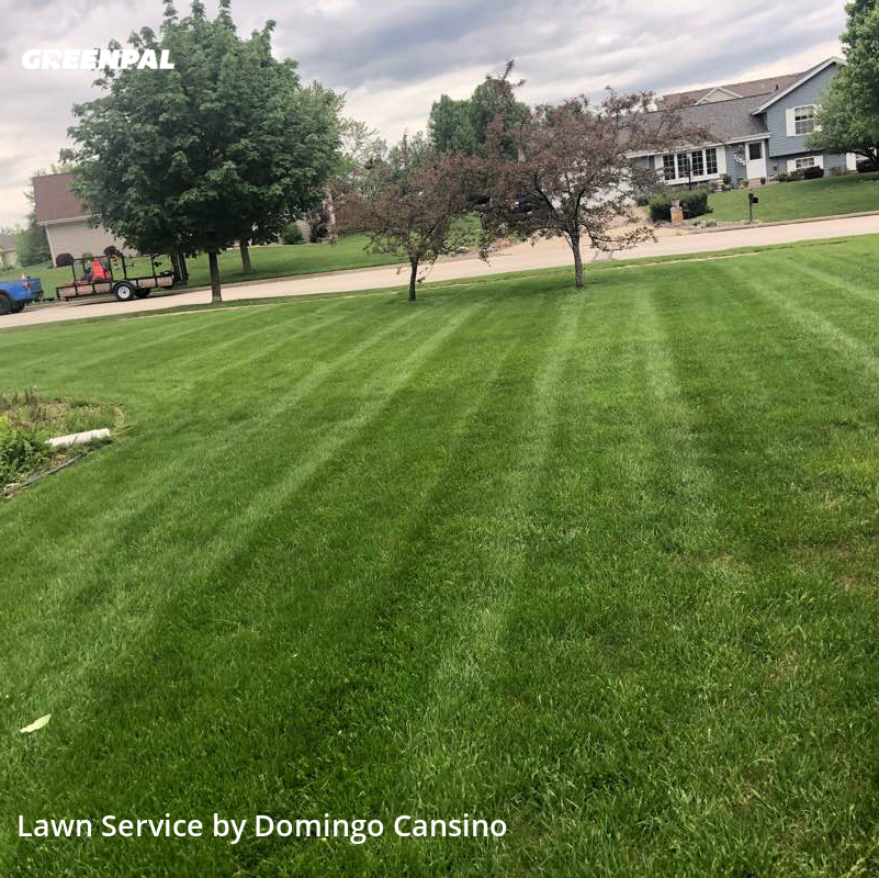 Lawn Servicein Franklin,53132,Lawn Care by Tri Stars Landscaping, work completed in Aug , 2020