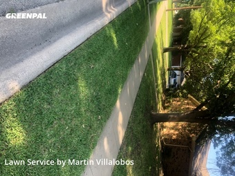Lawn Maintenancein Keller,76248,Grass Cutting by Precision Tree & Lawn, work completed in Jul , 2020