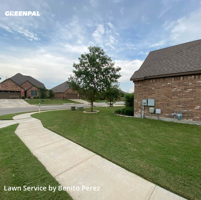 Lawn Care Servicein Leander,78641,Lawn Care Service by Benzki Lawn Care, work completed in Jul , 2020