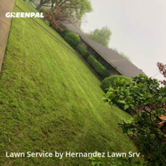 Lawn Carein Dallas,75233,Lawn Mow by HERNANDEZ LAWN SRV, work completed in Mar , 2020