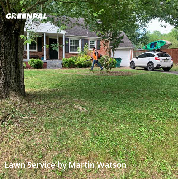 Lawn Carein Madison,37115,Grass Cutting by Watson Lawn Care, work completed in Aug , 2020
