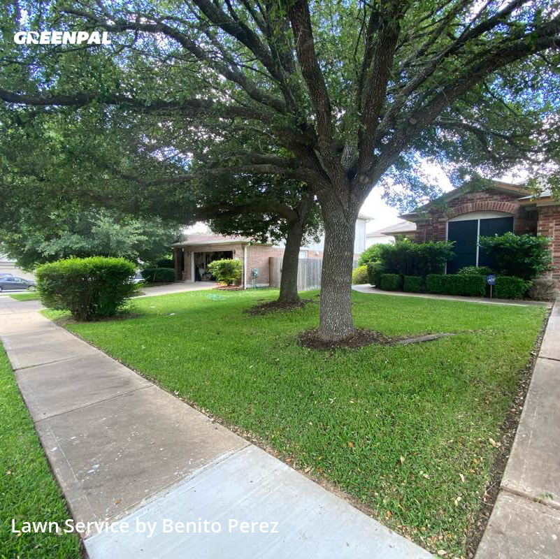 Lawn Servicein Cedar Park,78613,Lawn Mow by Benzki Lawn Care, work completed in Jul , 2020