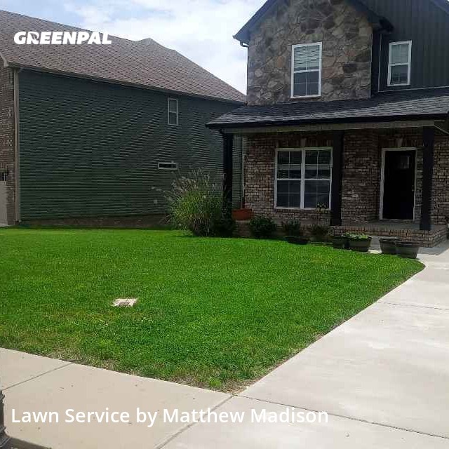 Lawn Servicein Clarksville,37043,Lawn Cutting by Green Bison Lawn Care, work completed in Aug , 2020