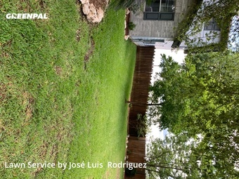 Yard Mowingin New Braunfels,78132,Grass Cutting by Texas Lawn Care Llc,, work completed in Jul , 2020
