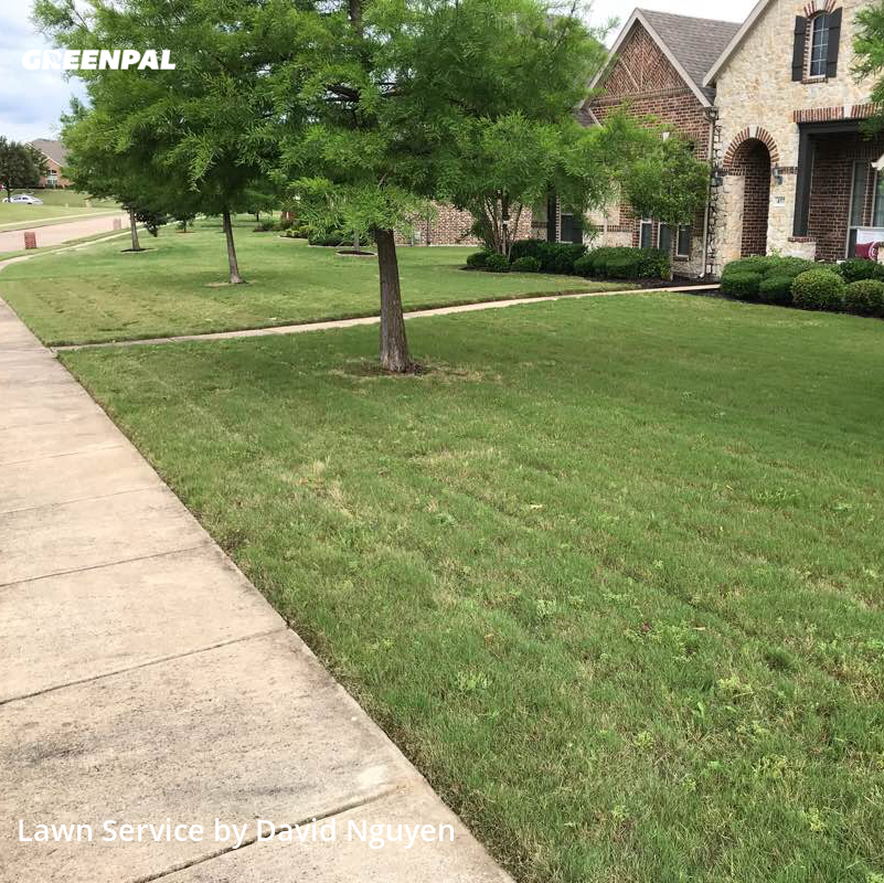 Grass Cuttingin Sunnyvale,75182,Lawn Service by Greenscape Lawn Care, work completed in Jul , 2020