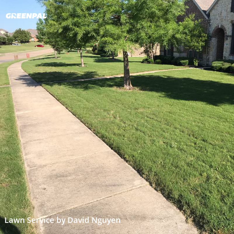Grass Cutin Sunnyvale,75182,Lawn Cutting by Greenscape Lawn Care, work completed in Jul , 2020