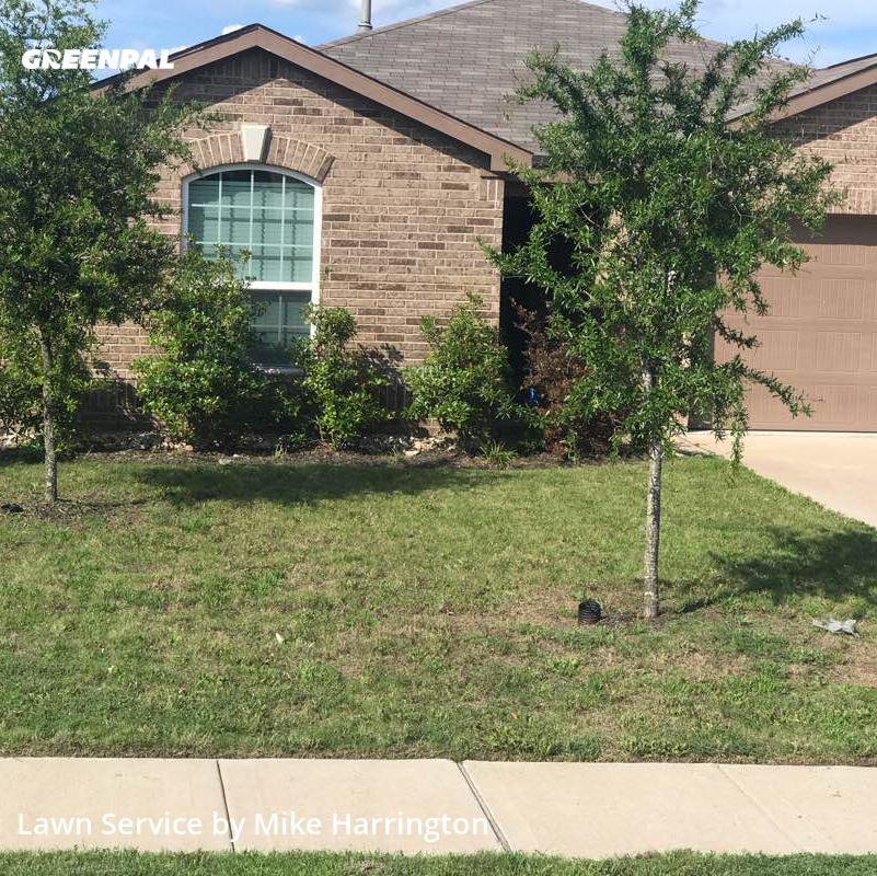 Grass Cutin Forney,75126,Yard Cutting by Action Lawn , work completed in Jul , 2020