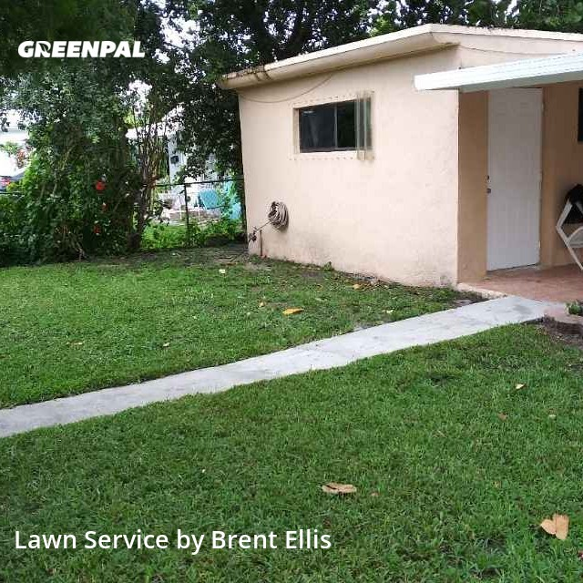 Lawn Cuttingin Hollywood,33020,Lawn Mowing by Alimayu Lawn Care, work completed in Sep , 2020