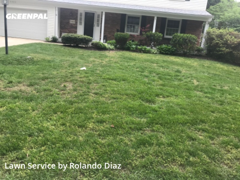 Yard Cuttingin Columbia,21045,Lawn Mowing by Diaz Landscaping Llc, work completed in Sep , 2020